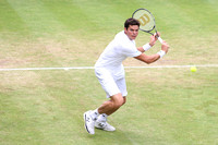 Milos Raonic (CAN) - Gerry-Weber-Open Halle 2013